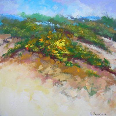 Adelio Bonacina - Aggrappati alla spiaggia