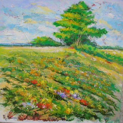 Adelio Bonacina - I colori della mente