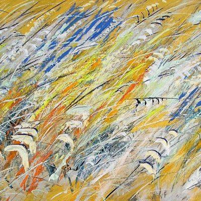 Adelio Bonacina - Oro nella lavanda